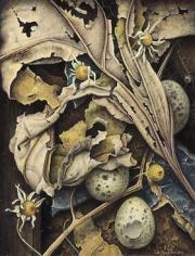 Compositie met eitjes © Aad Hofman