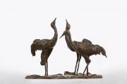 Kraanvogels © Bert Denneman