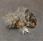 Stilleven met pikkende kip © Chris Herenius