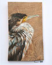 Vogelhoutje - Jonge aalscholver © Claudia van de Leur