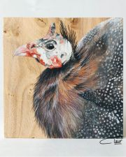 Vogelhoutje - Parelhoen © Claudia van de Leur