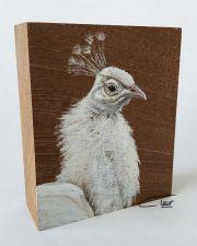 Vogelhoutje - Wittepauw © Claudia van de Leur