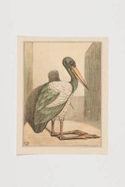 Lithografie met voorstelling van maraboe