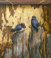 Zwaluwen © Erik van Ommen