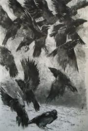 Opvliegende kraaien © Evert Meilink