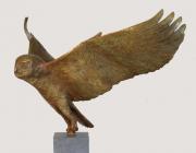 Vliegende uil II © Fiona Zondervan