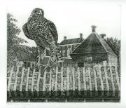 De Havixhorst © Han van Hagen