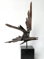 Sternvogel © Hetty Heyster