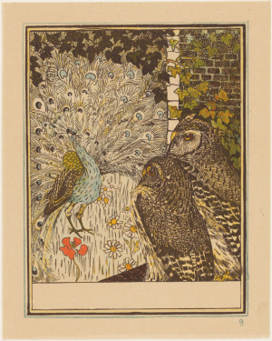 Pronkende pauw en twee uilen
