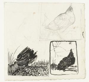 Schetsen van een omhoog kijkende kraai, Jan Mankes, 1900-1920
