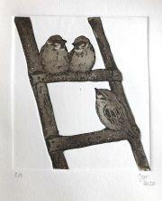 Mussen op ladder © Jos van der Meer