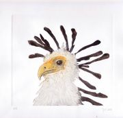 Secretarisvogel © Jos van der Meer