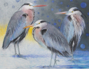 Drie reigers © Loes Botman
