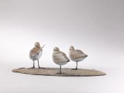 Strandlopers trio © Mark Dedrie