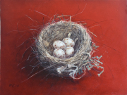 Nest boekvink © Piet Eggen