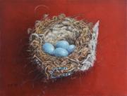 Nest heggenmus © Piet Eggen