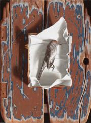 Dood vogeltje © Rob Møhlmann