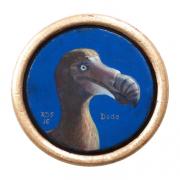Ronde dodo © Robin d'Arcy Shillcock
