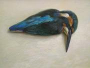 IJsvogel © Rutger Hiemstra