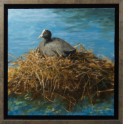 Op het nest © Ton van Steenbergen