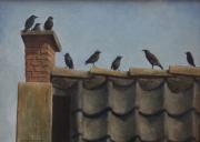Spreeuwen op het dak © Ton van Steenbergen