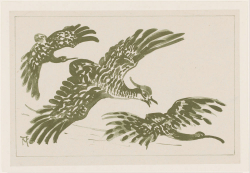 Drie vliegende vogels