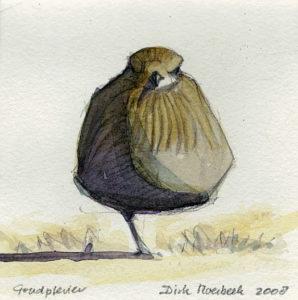 Goudplevier, aquarel, Dirk Moerbeek